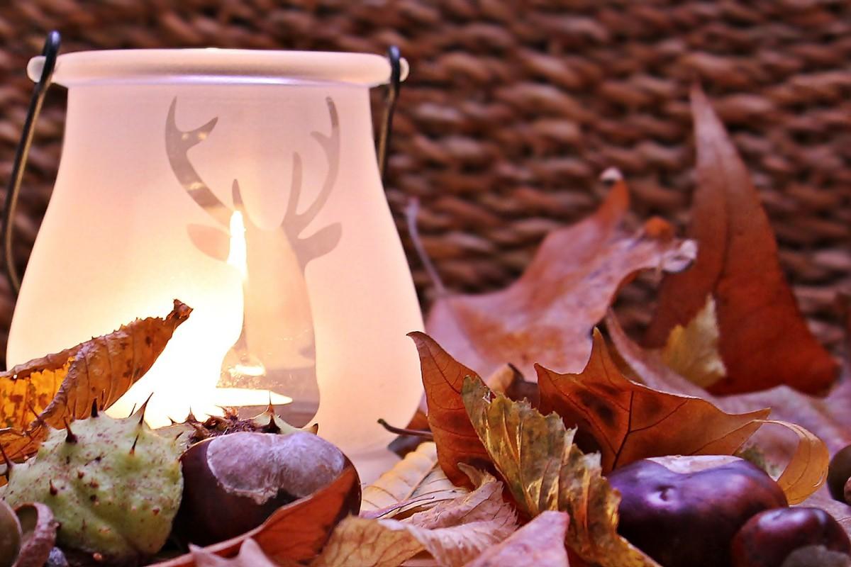 5 choses à faire à l'arrivée de l'automne